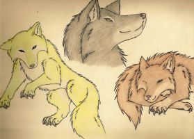 Tal's wolves by Angel-Moonlightwolf