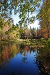 Autumn colors by LucieG-Stock
