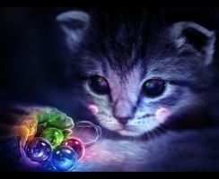 Nyan cat - The beginning by lorency