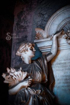 A walk in Cesena cemetery XXIV by SilvieTepes