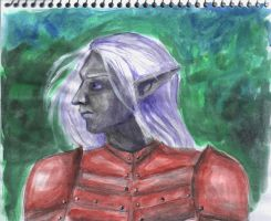 Drizzt by nikkeae