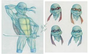 TMNT in Colour by Violette-Aner