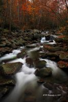 GSMNP Autumn 9 by TRBPhotographyLLC