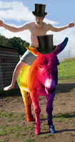 Rainbow Donkey with a Nice Hat Doing the Polka by thevioletcow
