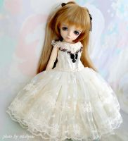 A Hybrid of Luts and Volks by miakyou