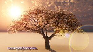 Blooming Tree by GoddyDesigns