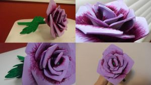Foam Paper Rose by OoOoOoOmnaOoOoOoO
