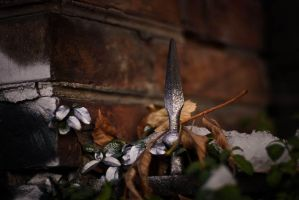 Silver decorations by neshill