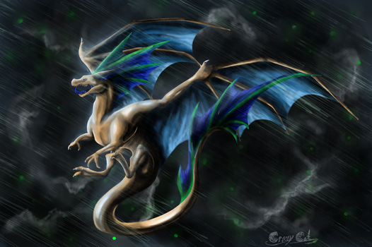 .:AT:. Through the Storm by Crazy-Cat009