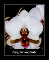 Happy Birthday Kelly by David-A-Wagner