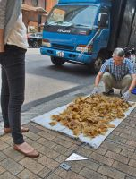 Sharks' fins drying in the street by asiaseen