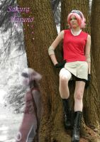 Sakura Haruno: Cosplay by winged-maniac