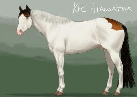 KhC Hiawatha SOLD. by sealle