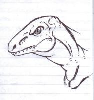 Raptor by Phycosmiley