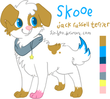 Skooe's reference sheet 2013 by sir-boo