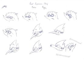 Facial Expression Study - Mordecai and Rigby by euamodeus