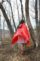 Little Red Riding Hood 10 by Anariel-Stock