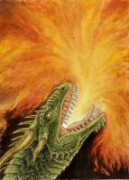 Fire Breathing Dragon ACEO by Strecno