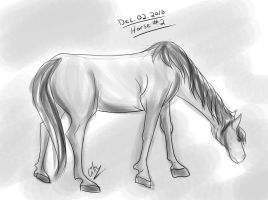Horse a Day - Dec 02 by liliy