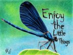 Enjoy the Little Things by FaeryWing