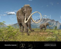 Mammuthus imperator by Rom-u