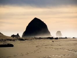 A walk to Haystack Rock by ahley