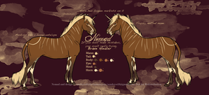 Nomad Reference Sheet by sandeyes13