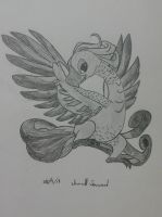 Bird by safira94