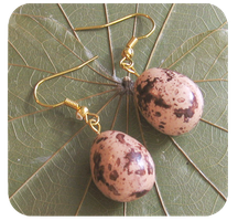quail egg earrings by BadgersBakery