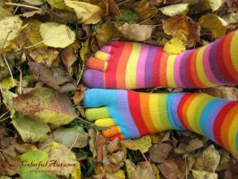Colorful Autumn by zsofigirl