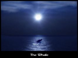 The Whale by ispec