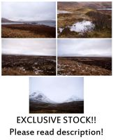 -EXCLUSIVE- Scottish Marshes by syccas-stock