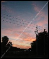 Powerlines In The Sunset by anubis281