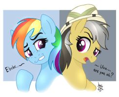 MLP FIM - Rainbow Dash And Daring Do by Joakaha