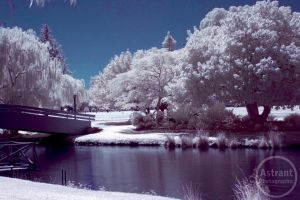 Infrared 1 by astrant82