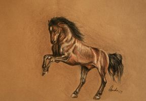 Animal drawing by WhiteRaven89