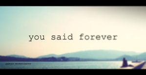 You Said Forever by oberst176