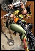 Batman and Hawkwoman by Seabra