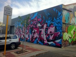 Mt Lawley 1 by PerthGraffScene