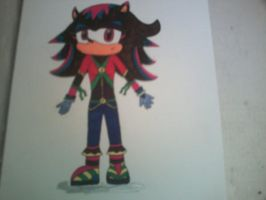Meghan the Hedgehog (Redraw Official Complete) by ProjectXGuardian