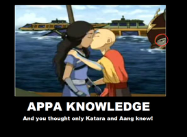 Appa Knowledge by sokkas-boomerang