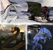 Dragon Menagerie:Synopsis 4 by adorety