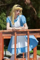 Alice in Wonderland 2 by AliceInTheTARDIS