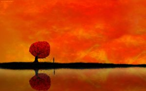 autumn-reflection Widescreen by daewoniii