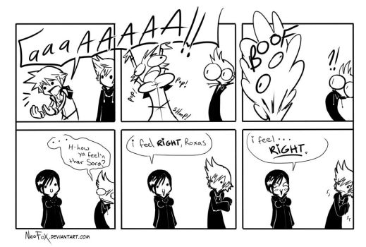 The truth behind Xion SPOILERZ by neofox