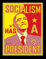 Socialist Obama Poster by Conservatoons