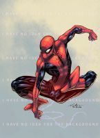 Spider-Man Color by logicfun