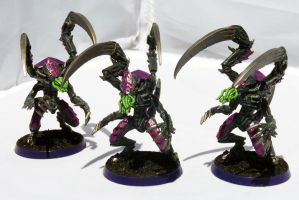 HFM Lictor Brood by Girot