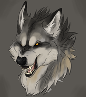 Grey Wolf by TheCatArtist027