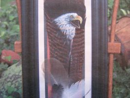 Screaming eagle - framed by Wildlifefeathers